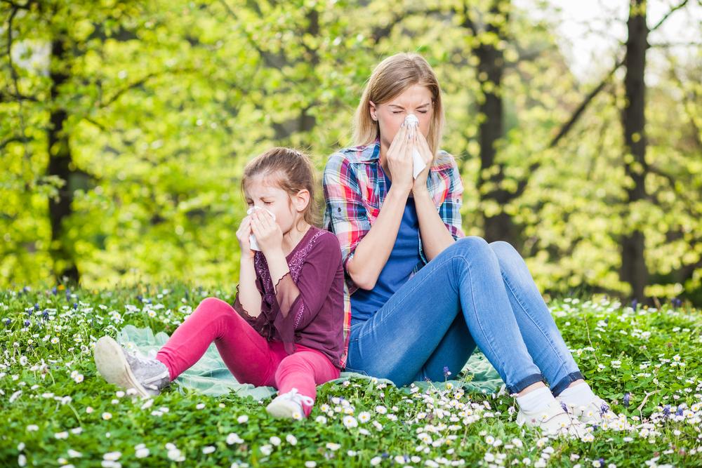 Allergie chez Shutterstock