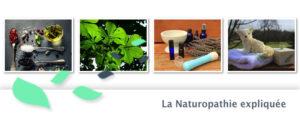 Article Invité : Christine nous parle Naturopathie