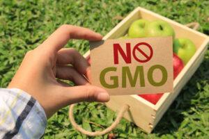 5 points à connaître sur les OGM aux Etats-Unis