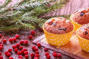 Baie de saison : la cranberry ou la canneberge